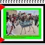 """Preoccupazioni """"razziste"""" di Israele"""