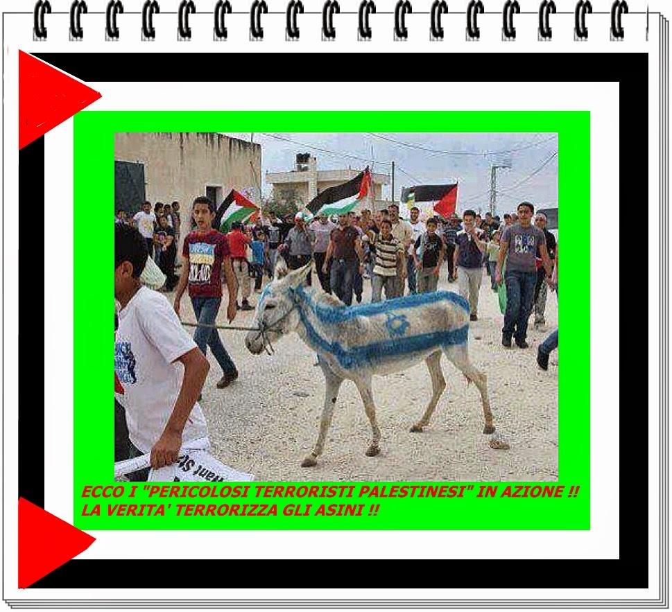 palestina asino sionista
